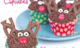 Delicious Reindeer Cupcakes