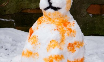 Tabitha The Painted Snow Cat