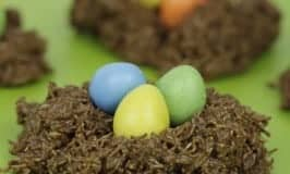 Easy and delicious EASTER NESTS for kids to make.