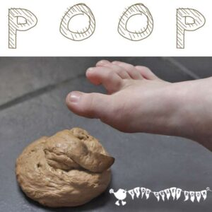 Fake Dog Poop, April Fool's Day Prank