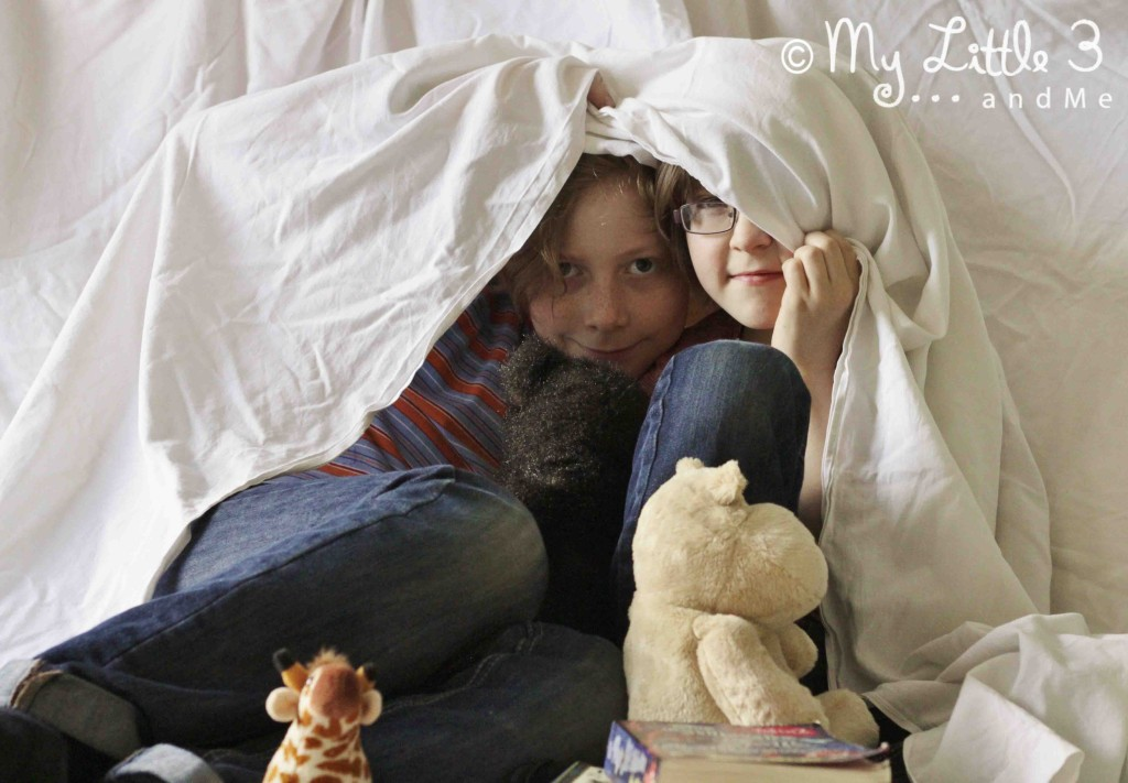 Den Building - 100 days of play