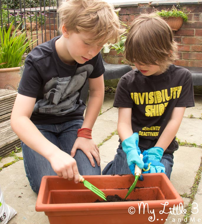 Gardening Fun