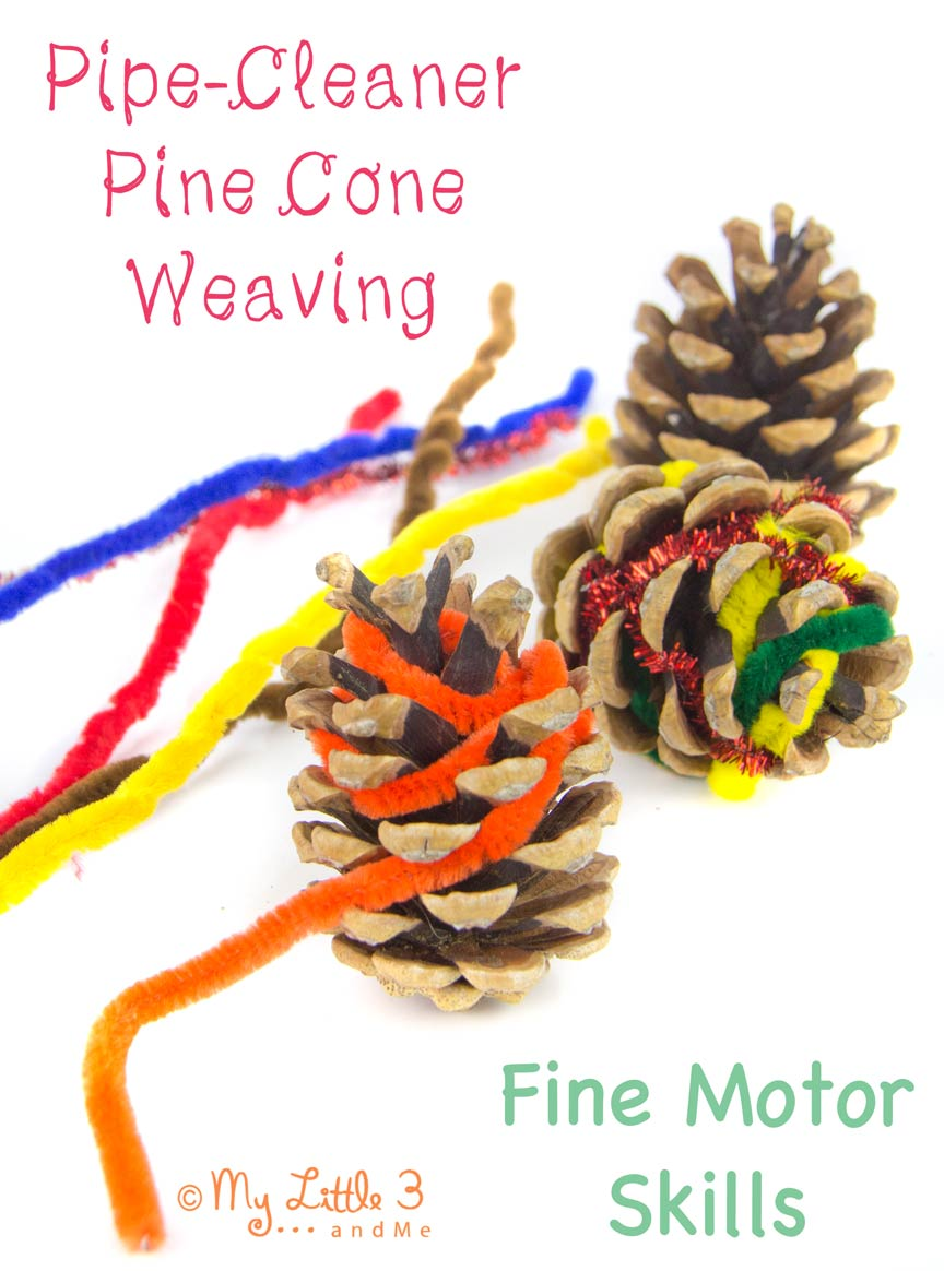 Pine-Cones-and-Pipe-Cleaners-Fine-Motor-Skill-Development-from-My-Little-3-and-Me_edited-1