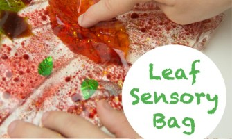 Make leaf sensory bags, a fabulous Autumn activity for kids.