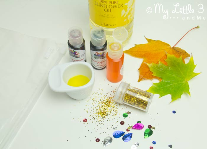 Supplies to make leaf sensory bags, a fantastic Autumn activity for kids.