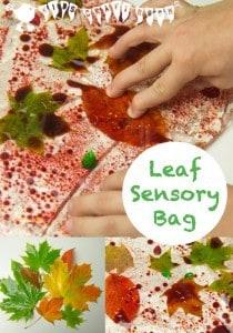 Leaf Sensory Bags