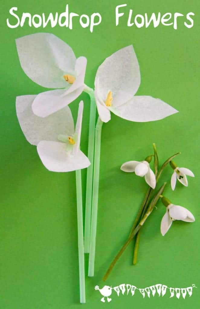 Snowdrop tissue paper flowers a simple winter craft for kids.