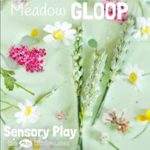 Meadow Oobleck/Gloop is an exciting sensory play opportunity that stimulates kids senses, connects them with Nature and promotes many areas of learning.