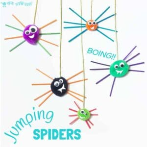 Pom Pom Jumping Spider Craft