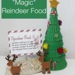 Animal-Safe-magic-reindeer-food-recipe-