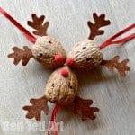 Reindeer-Ornament-Walnut-Crafts