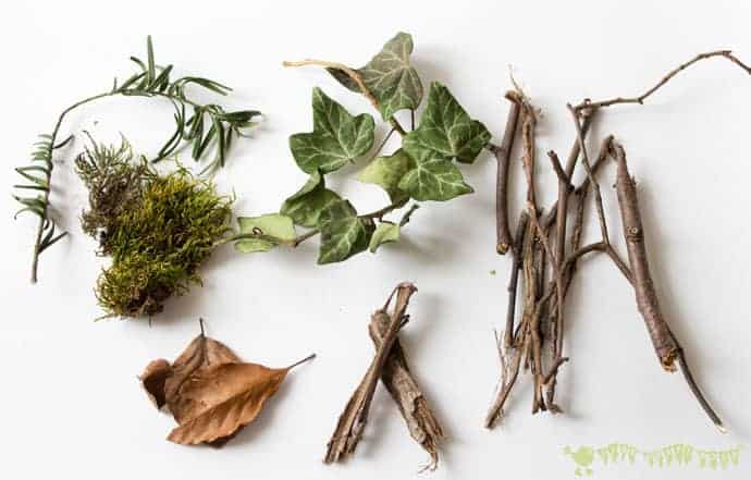 Collecting-natural-materials-to-make-a-birds-nest-STEAM-project