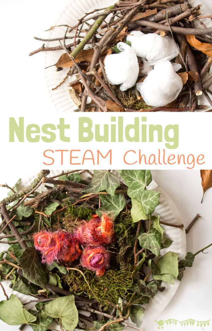 Make A Birds Nest STEAM project is a fun way to challenge your kids and get them testing out their ideas and problem solving. Can you build a nest using natural materials just like real birds do? No glue or tape allowed! #STEM #STEAM #Easter #eastercrafts #easteractivities #kidscrafts #craftsforkids #kidscraftroom #springcrafts #springactivities #ECE #kidsactivities #nest #birdnests