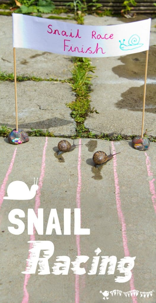 Learn Snail Facts by Snail Racing - Kids Craft Room