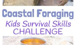 Coastal Foraging For Food-Survival Skills For Kids