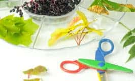 Sensory Nature Cutting Tray