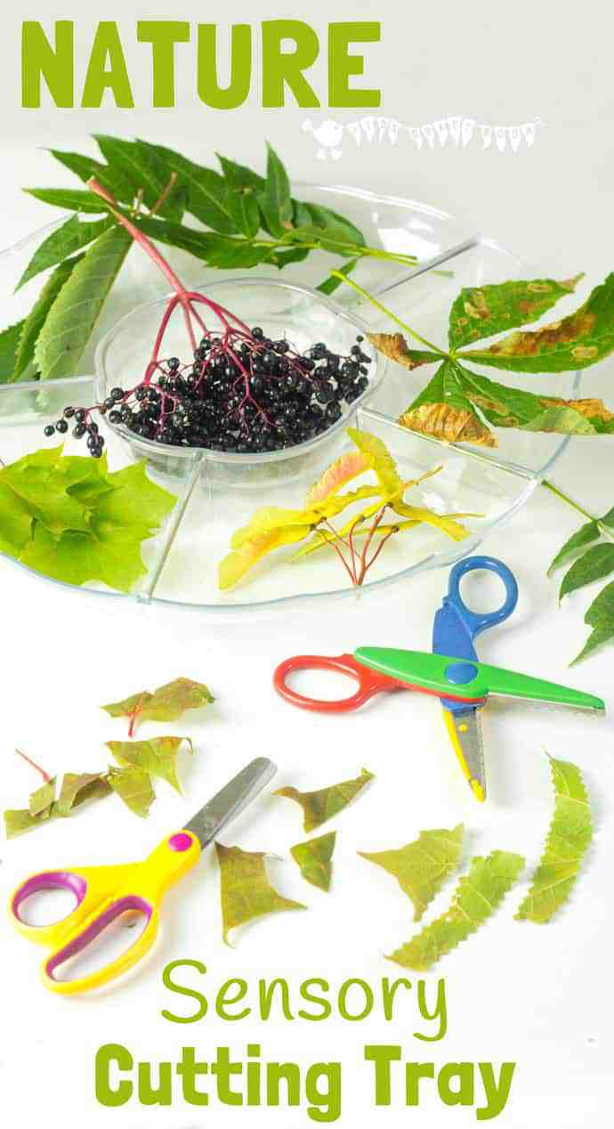 A Sensory Nature Cutting Tray is a fun activity for kids to engage with nature, stimulate the senses and develop fine motor scissor and sorting skills too. #sensory #sensoryplay #sensoryplayideas #sensorybins #motorskills #finemotorskills #cuttingskills #natureactivities #naturecrafts #kidscraftsroom #kidsactivities #earlyyears #ECE #preschool #prek #preschoolactivities