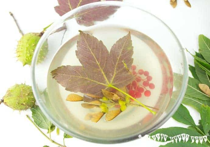 Autumn-Sensory-Play-Gel-Stage-2- Autumn Sensory Play Gel is an irresistible hands-on play idea bringing the wonders of Nature into a squishy, squashy textural delight kids LOVE to explore. Sensory play at its best!