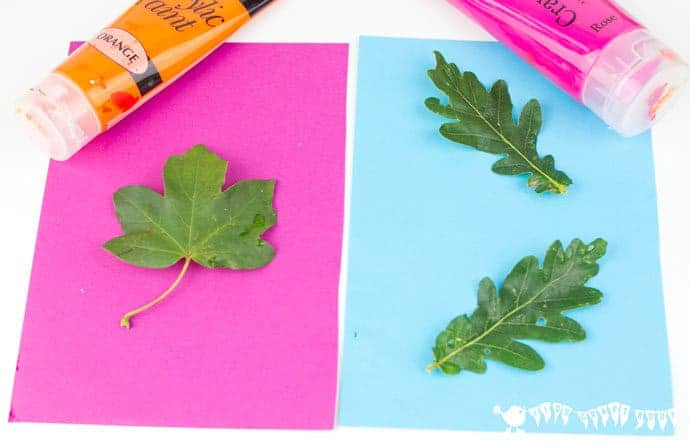 Choosing paper and paint combinations for Pop Art Leaf Printing