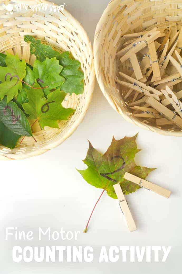 FINE MOTOR COUNTING ACTIVITY - This wonderful seasonal counting activity uses leaves to develop early math one to one correspondence, number recognition and develop fine motor skills too. #motorskills #finemotorskills #natureactivities #naturecrafts #kidscraftsroom #kidsactivities #earlyyears #ECE #preschool #prek #preschoolactivities