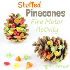 Autumn Stuffed Pine Cone Craft