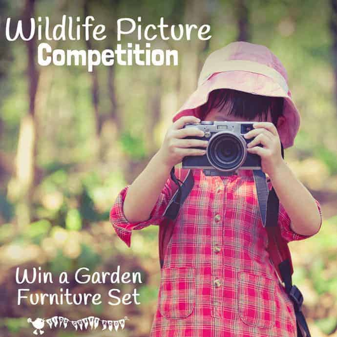 Now the leaves are beginning to fall from the trees and bushes it's a great time of year to get out in the garden with the kids to do a bit of wildlife spotting. Grab your camera and snap your best photo for a chance to win a set of garden furniture in a wildlife photography competition.