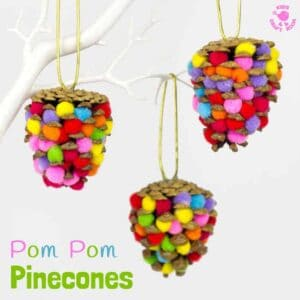 Colourful Pom Pom Pinecones