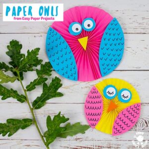 Easy Paper Owl Craft