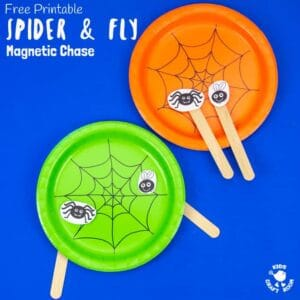 Magnetic Spider and Fly Craft