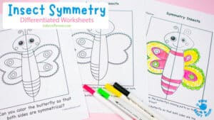 Insect Symmetry Worksheets