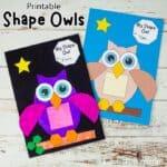 Shape Owl Craft