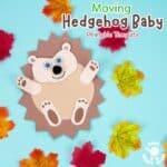 Moving Baby Hedgehog Craft