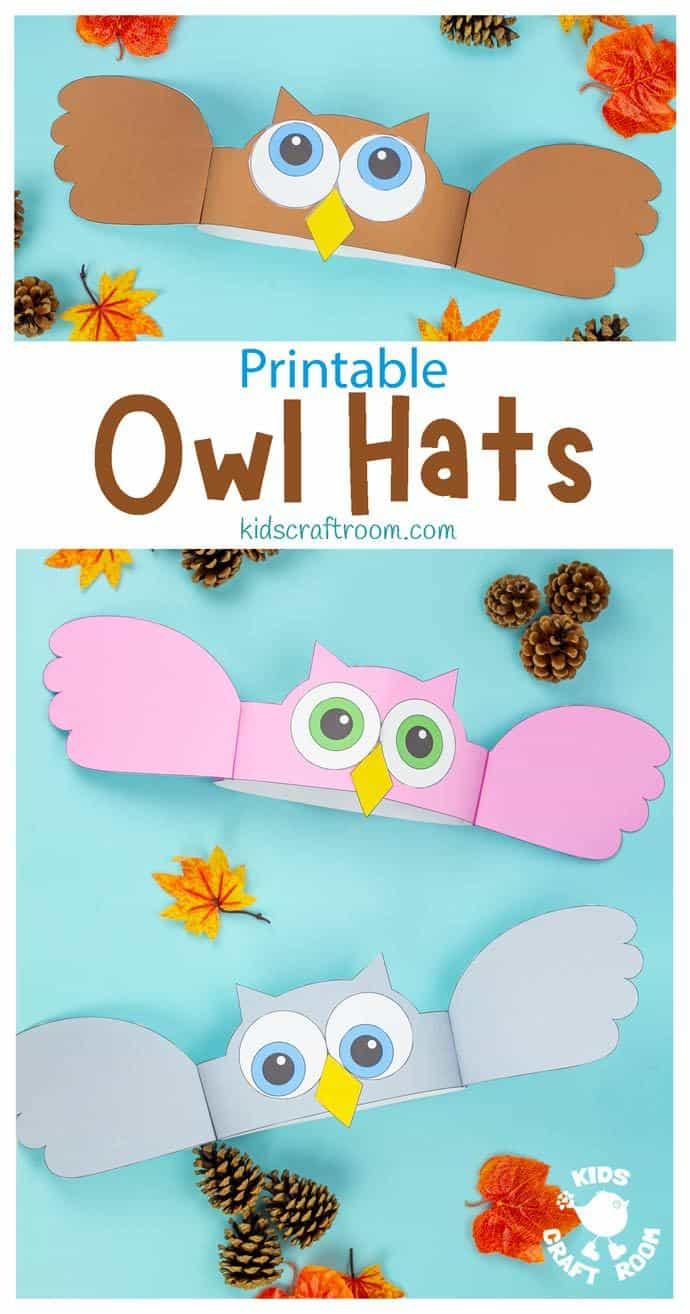 Owl Hat Craft pin image 1.