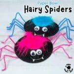 Hairy Spider Craft
